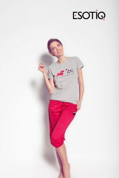 Esotiq Miro 31227-09X 31229 -43X Dámské pyžamo L jako na fotografii